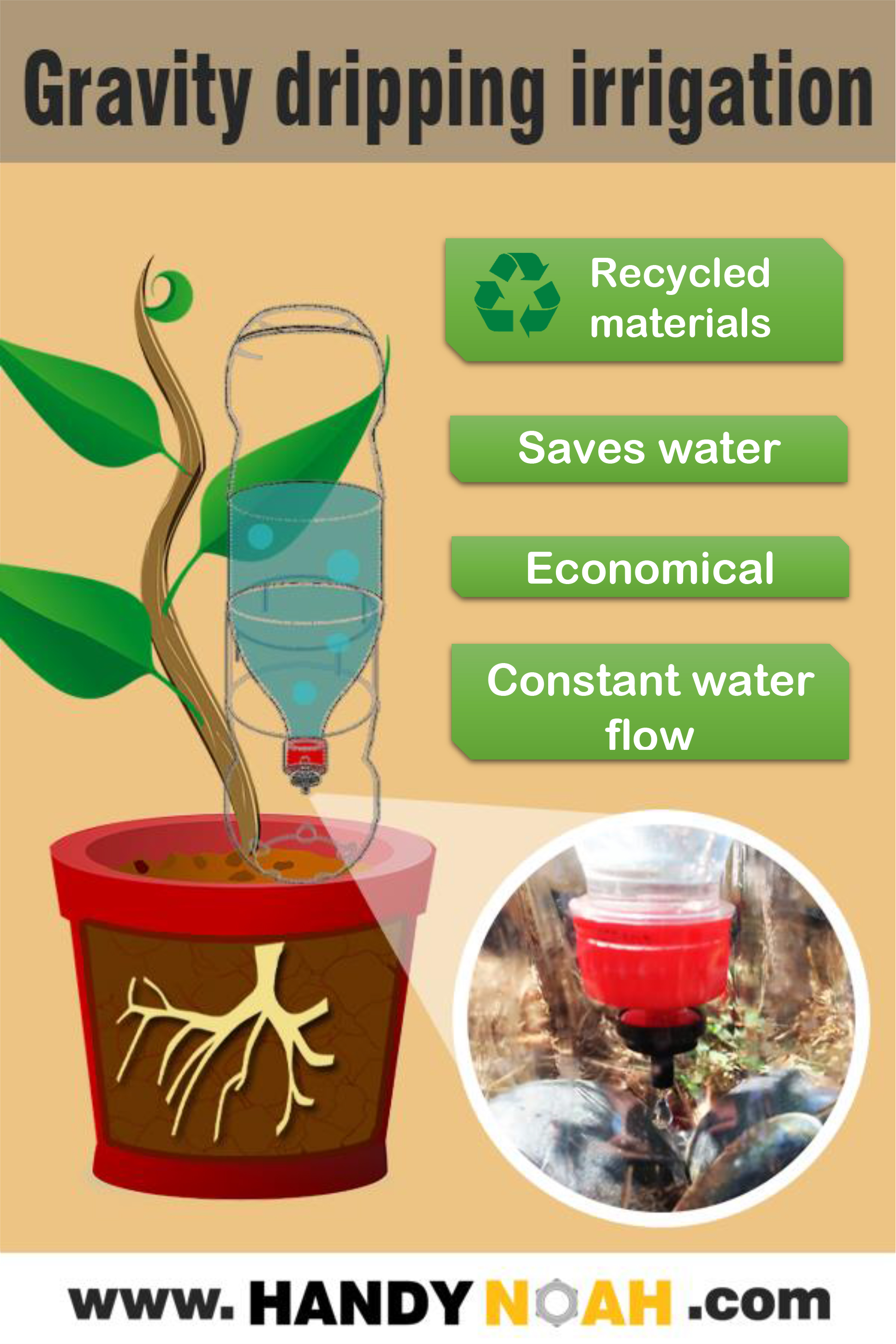 Make a gravity drip irrigation system using a 2 litter recycled soda bottle